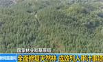 国家林业和草原局:全面修复天然林成效列入审计事项