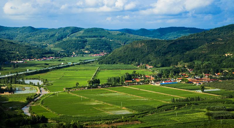 我國20年累計實施退耕還林還草5.08億畝