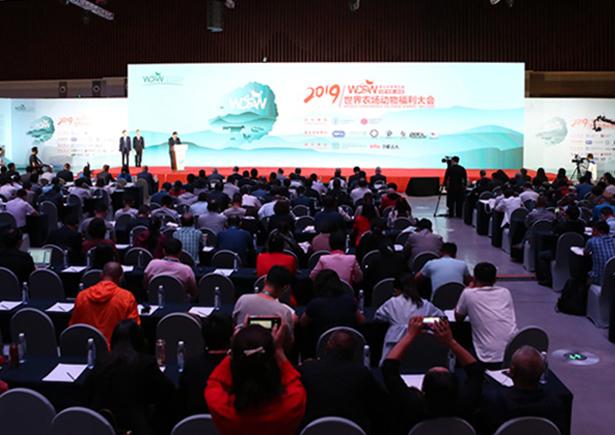 第三届世界农场动物福利大会在青岛举行:凝聚共识 共创未来