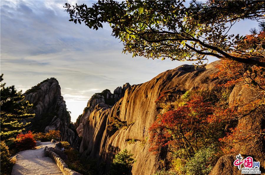 深秋季节黄山:五色纷披 灿若图绣(组图)