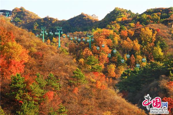 <b>北京京郊:深秋金山岭长城已经非常迷人</b>