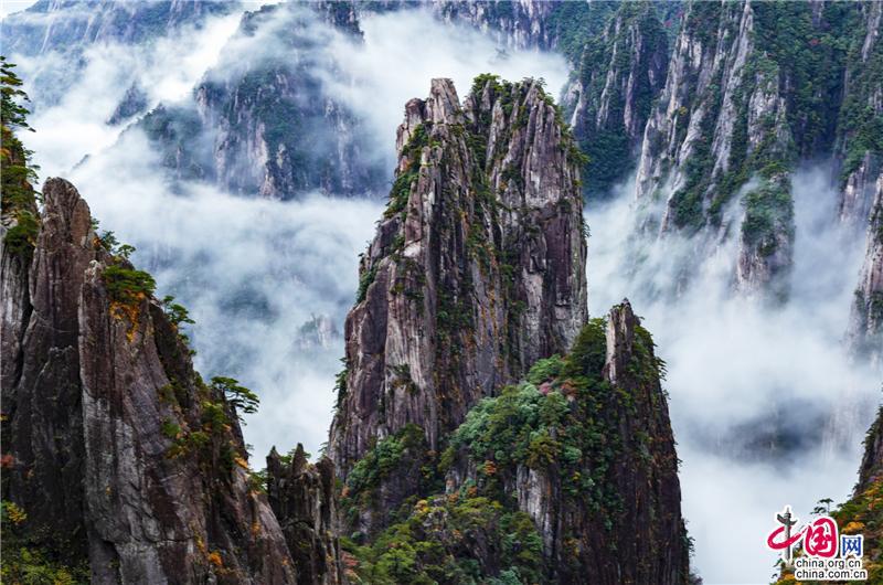 黄山:秋色遇上云海 如同色彩浓郁的天然油画