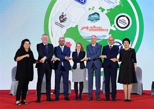 【视频】农场动物福利在中国:共享新成果 共创新未来