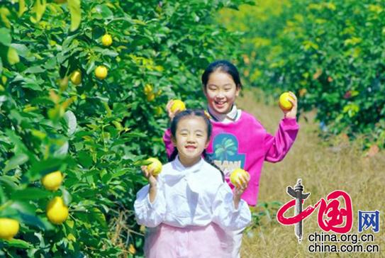 http://www.cqsybj.com/chongqingxinwen/81862.html