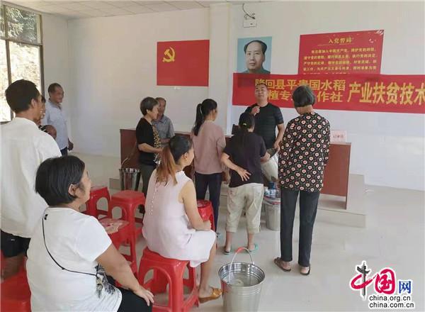 湖南隆回邹平初:牵手贫困户_种粮脱贫摘穷帽
