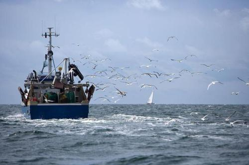 自然资源部:今年前三季度海洋生产总值近6.4万亿元