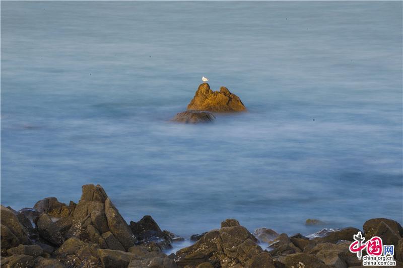 到青岛西海岸_欣赏海岸线上绽放的美丽(图)