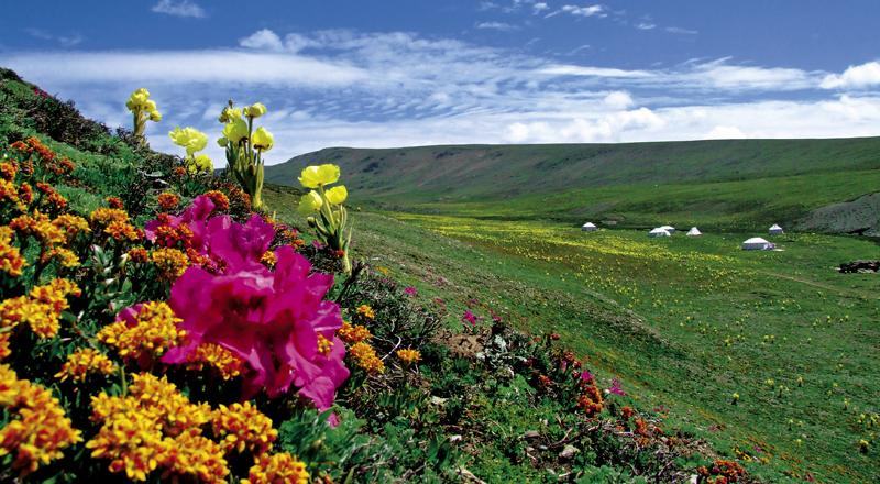 三江源国家公园试点31项任务全完成 年内正式成立