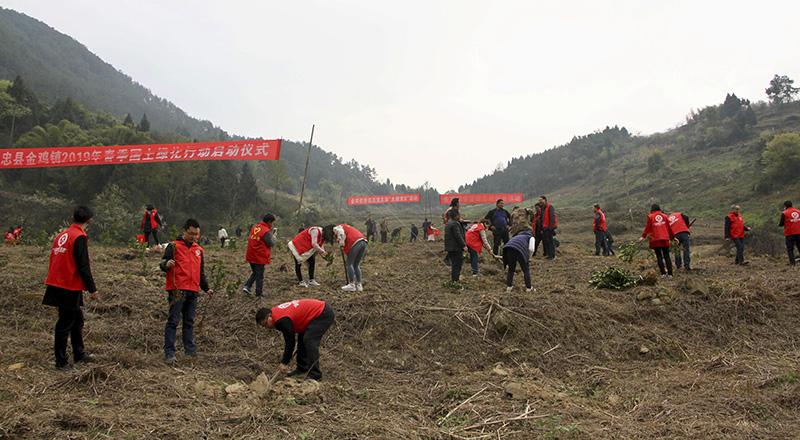2019年中国造林706.7万公顷 森林覆盖率达22.96%