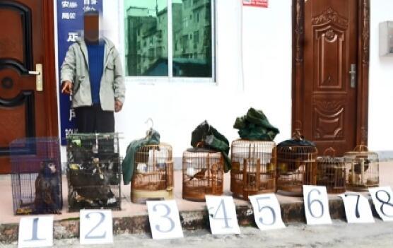 广西森警连破两起非法捕猎、收购野生动物案