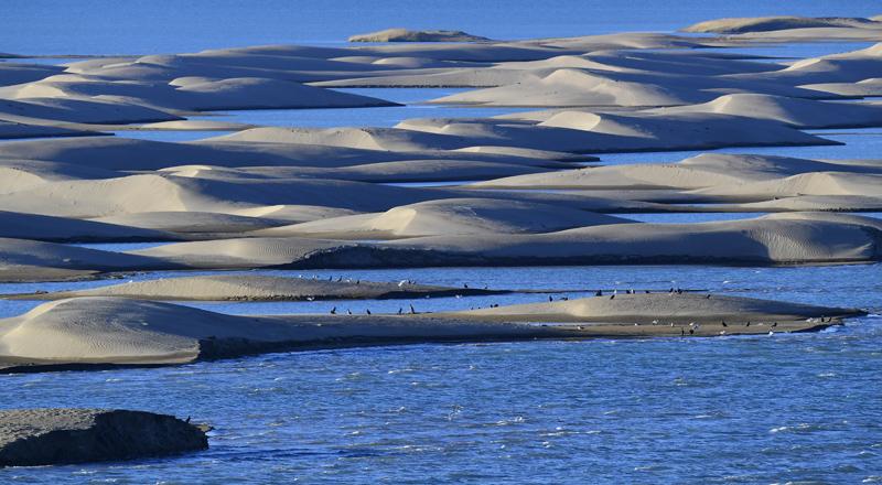 青海自然保护地体系示范省建设工作取得积极进展