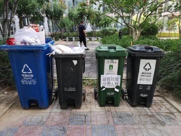 西城区盛景嘉园内,混投垃圾现象明显。摄 新京报记者 黄哲程