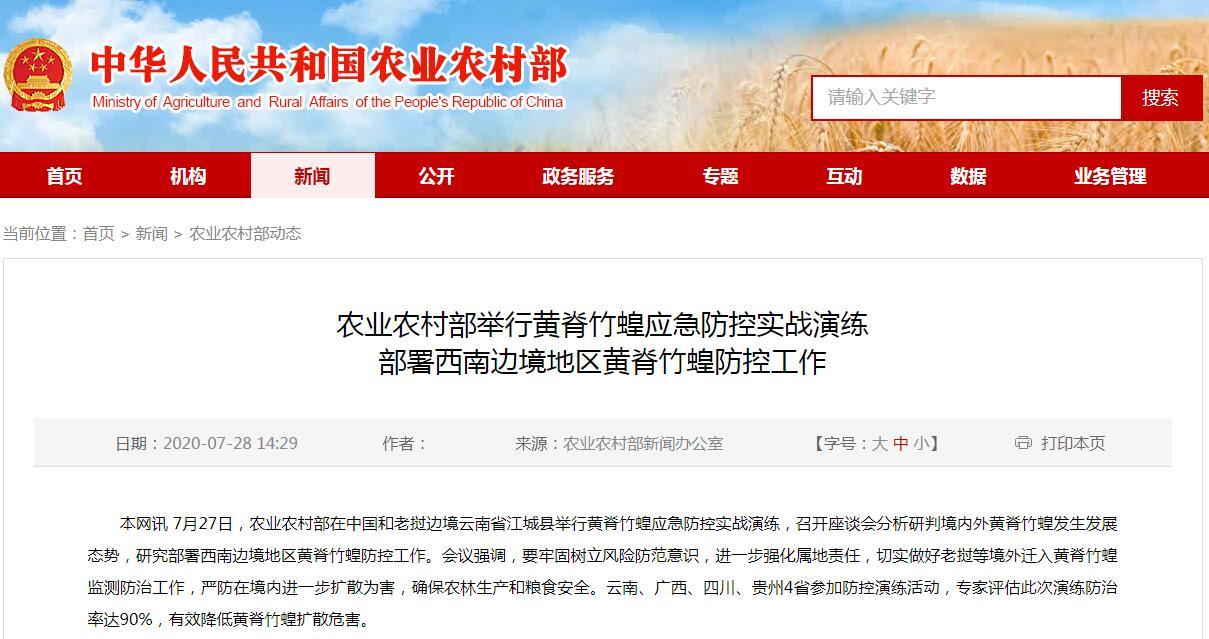 云南黄脊竹蝗防控形势严峻 农业农村部举行应急防控实战演练