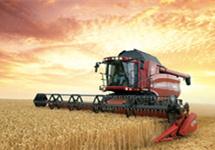 守稳农业基本盘 上半年种植业增加值同比增长3.8%