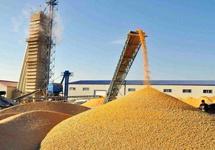中国粮食相关企业数量大增 行业前景如何?