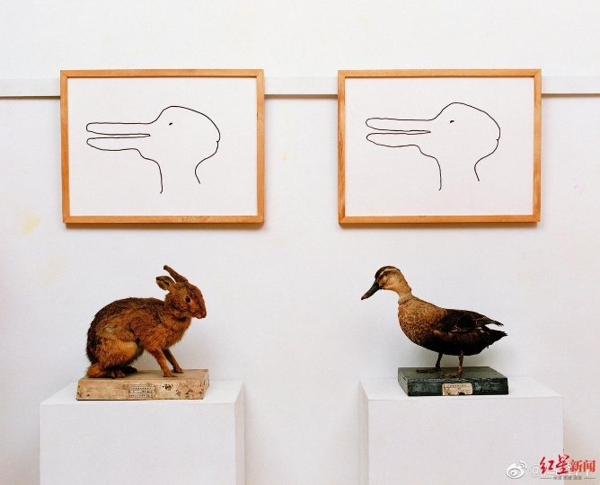 ▲冯峰创作的第一件《鸭兔》作品。图据微博