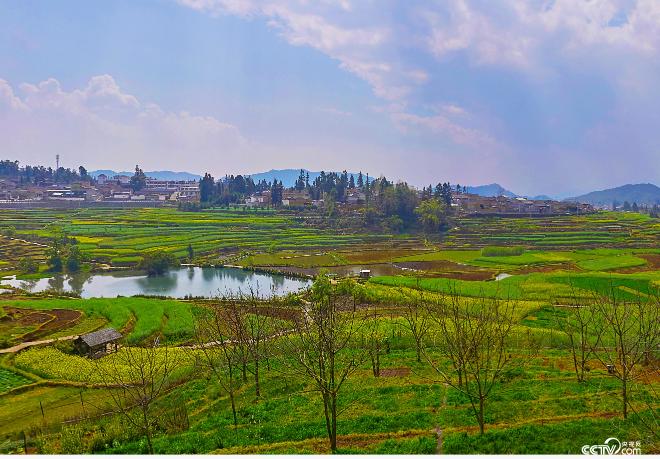"""云南腾冲清水中寨司莫拉佤族村是全国第二批""""中国少数民族特色村寨"""",正在绘就美丽乡村新画卷。"""