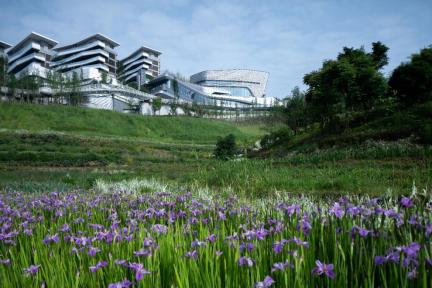 麓悦江城 下一个公园城市的重庆范本