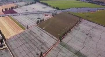 新疆:新棉收购全面展开  棉价稳定朵朵归仓