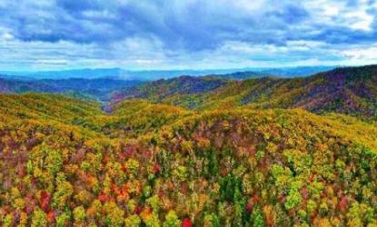国家林草局:国家公园事业进入建设阶段