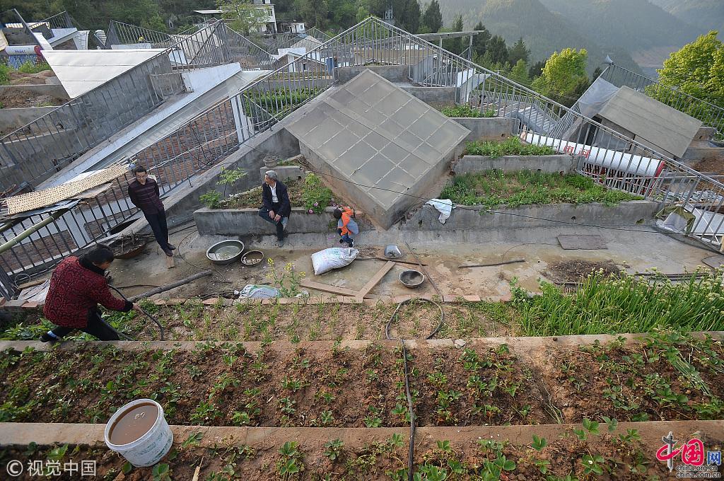Le village de jintai abrite des r sidences id ales selon - La residence eb par replinger hossner architects ...