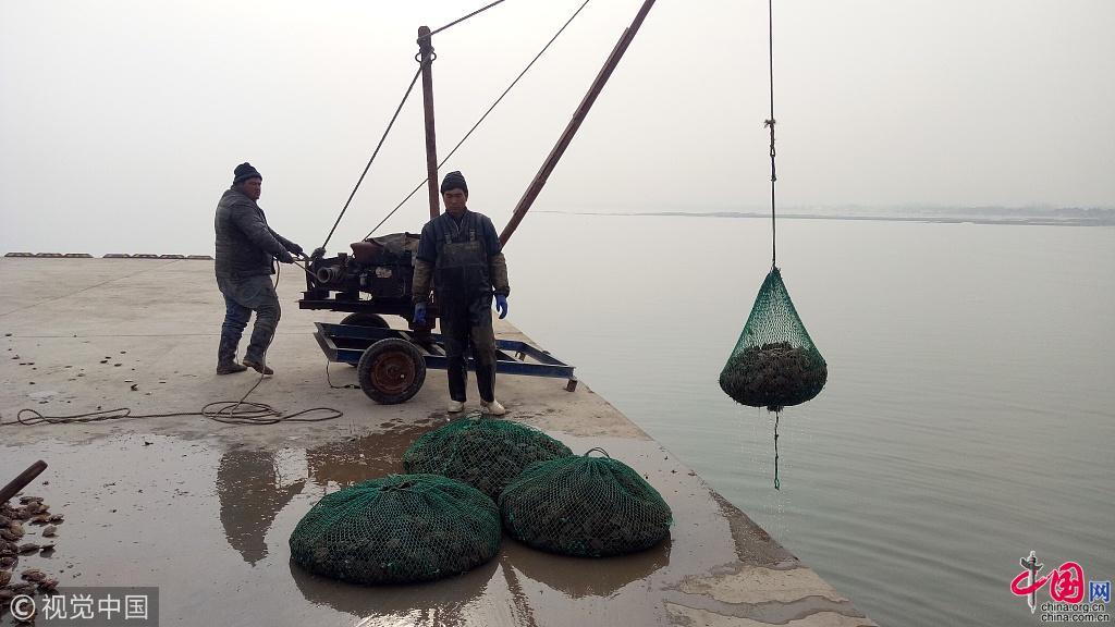 Shandong bonne r colte de p toncles rizhao for Acheter une chambre de bonne