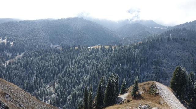 新疆奇台県の江布拉克景勝地が「冬の装い」に