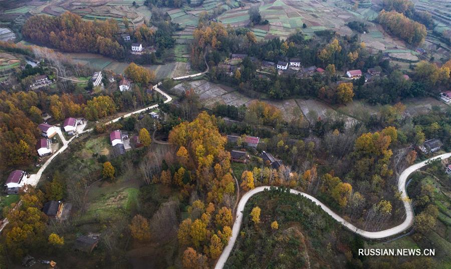 Краски поздней осени в уезде Янсянь