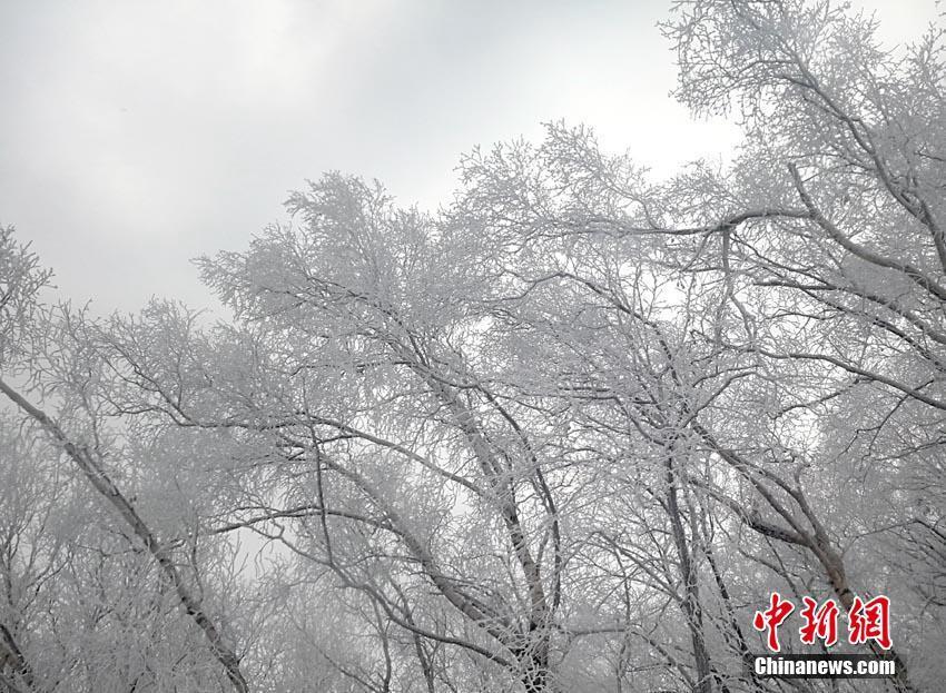 Сказочная изморозь в г. Цзилинь, провинции Цзилинь