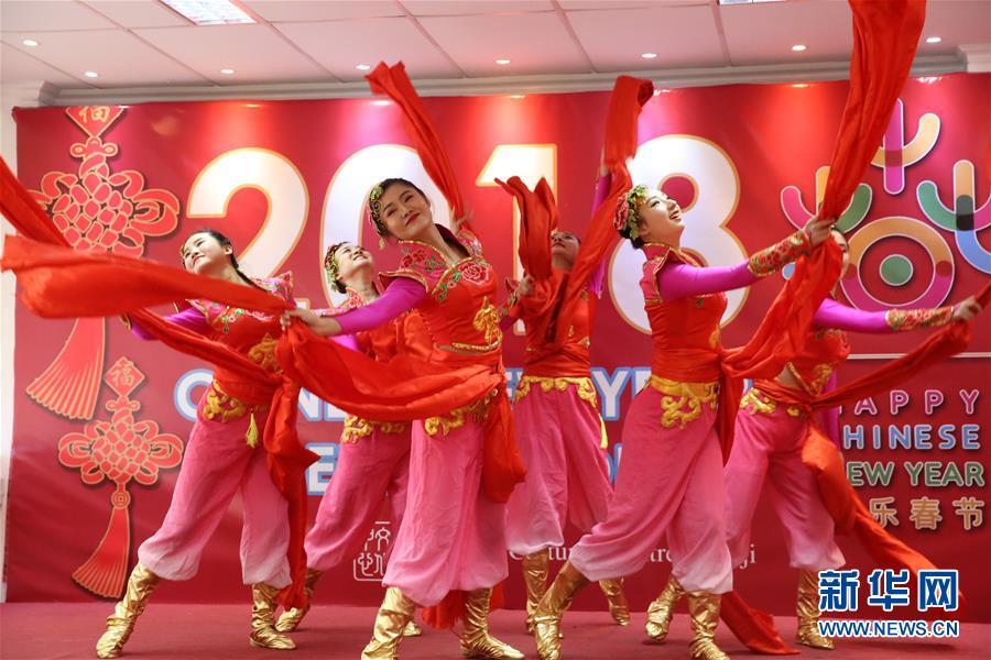 Художественный коллектив из провинции Хэнань открыл занавес «Веселого праздника Весны» на Фиджи