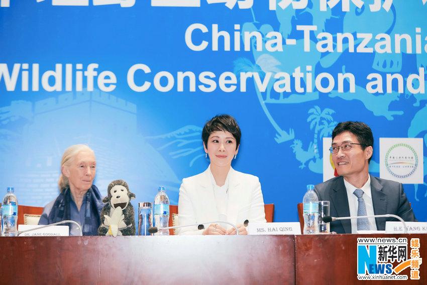Хай Цин присвоено звание почетного посла по защите диких животных Танзании