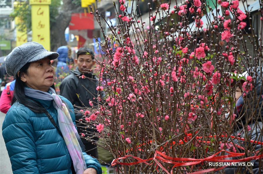 Во Вьетнаме готовятся к встрече Праздника Весны
