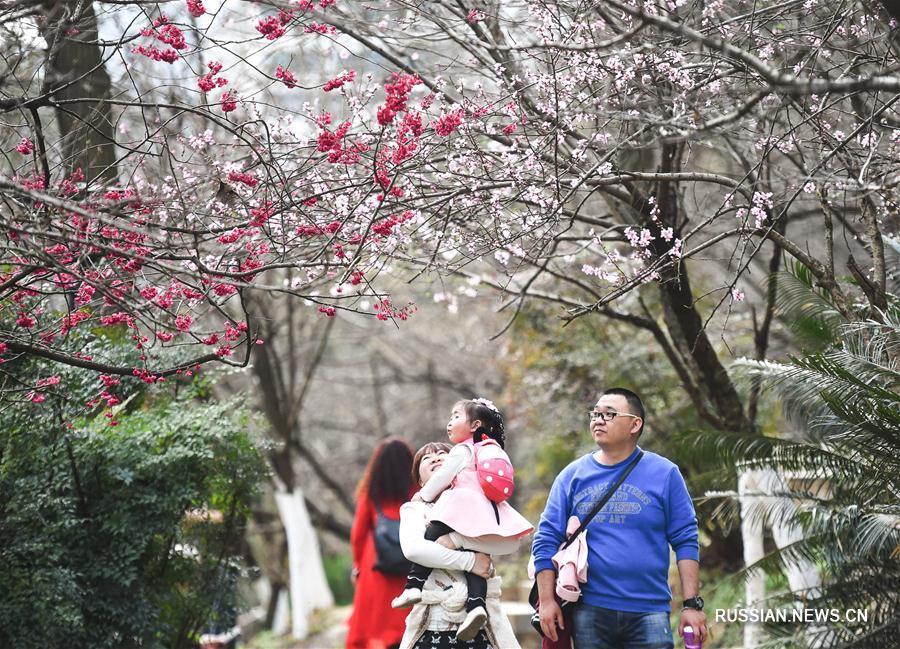 Пользуясь ясной и теплой погодой, многие жители Гуйяна, административного центра провинции Гуйчжоу /Юго-Западный Китай/, пришли сегодня на прогулку в городской парк Хэбинь, чтобы подышать свежим воздухом и полюбоваться весенними цветами.