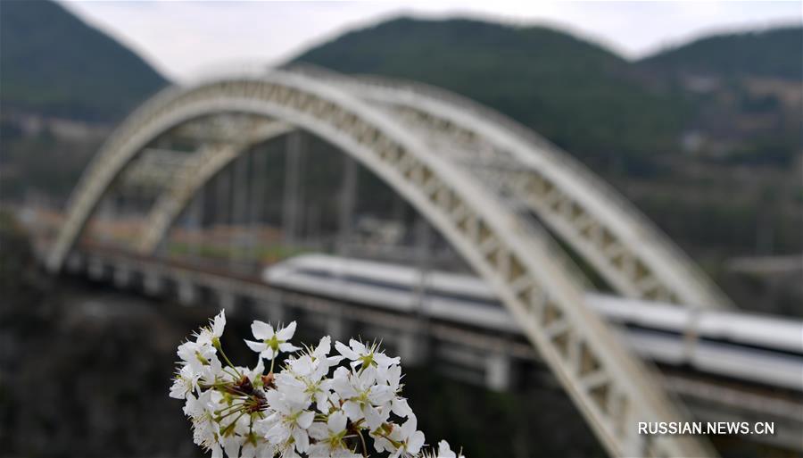 Весенние виды провинции Хубэй