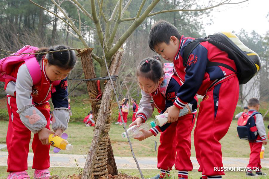 В Китае отметили День посадки деревьев