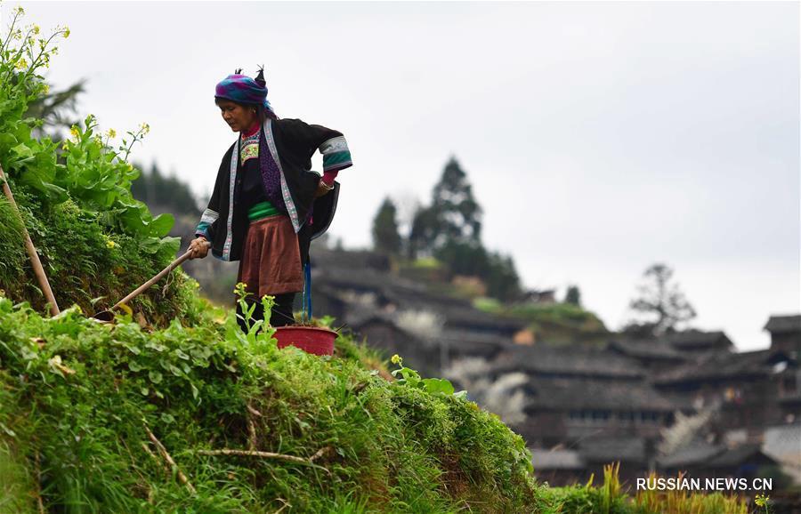 В уезде Жуншуй готовятся к весенней пахоте