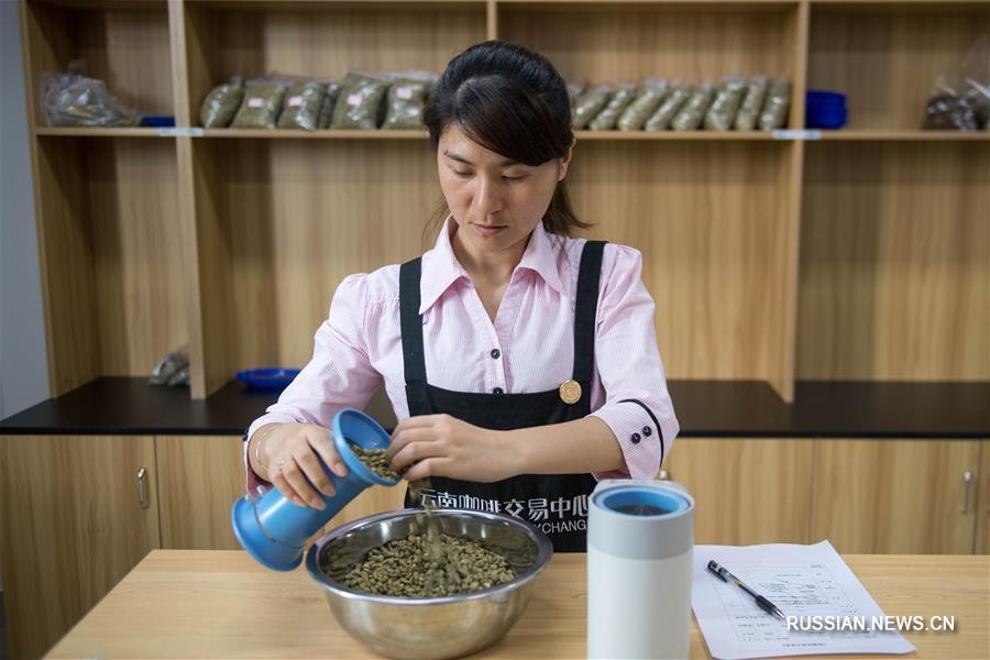 Кофе из городского округа Пуэр провинции Юньнань