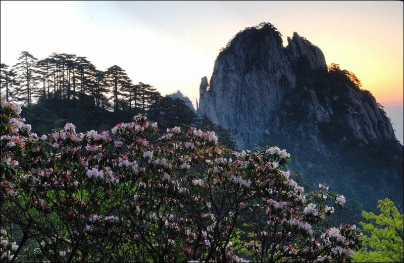 Живописные майские пейзажи в горах Хуаншань