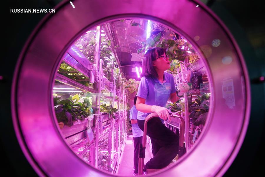 """Сегодня успешно завершился эксперимент """"Юэгун-365"""" /""""Лунный дворец - 365""""/, осуществленный Пекинским университетом авиации и космонавтики. Эксперимент стартовал 10 мая 2017 года и продлился 370 дней."""
