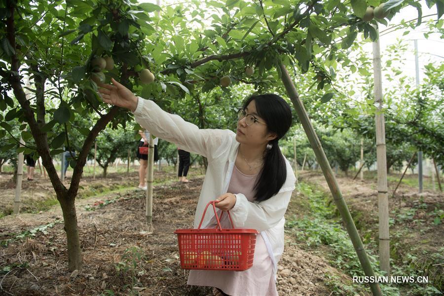 Сельский туризм в Шэнчжоу