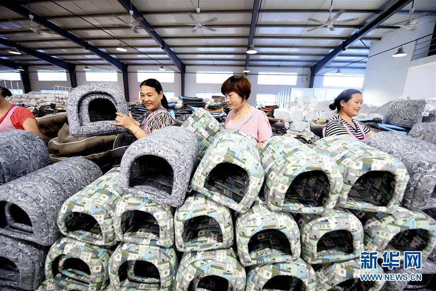 Производство матерчатых домиков для собак стало средством для увеличения доходов крестьян городского округа Линьи