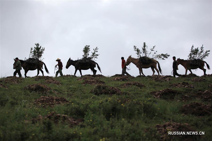 Охрана окружающей среды в провинции Хэбэй