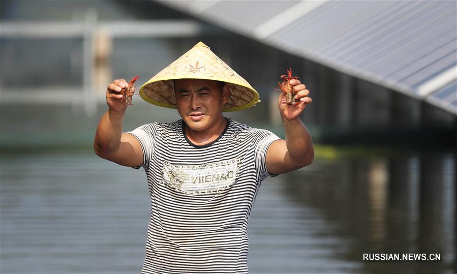 Двойное использование озера Баоинху в провинции Цзянсу помогает увеличить прибыль