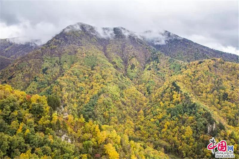 Осенние пейзажи государственного заповедника Улиншань в провинции Хэбэй