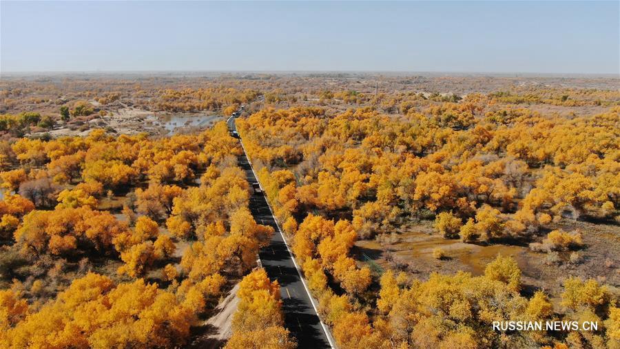 Красота осенней природы во Внутренней Монголии