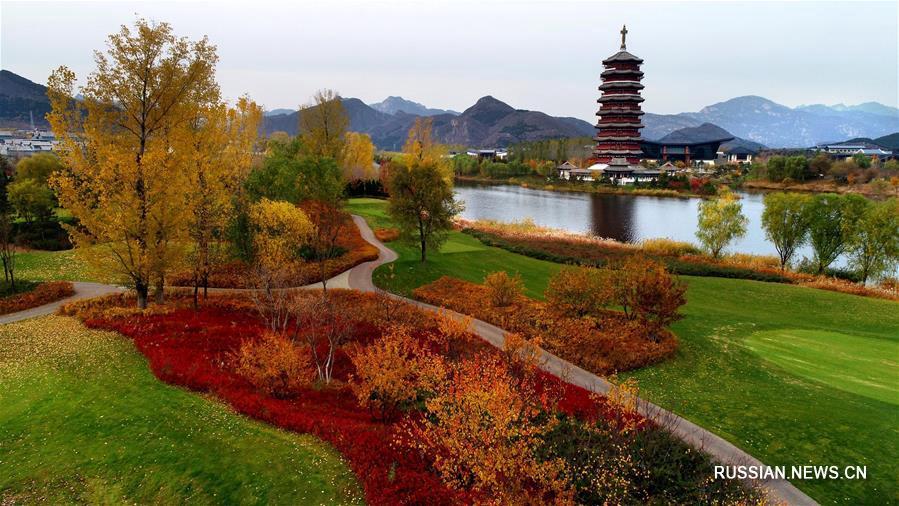 Природа близ озера Яньци в Пекине