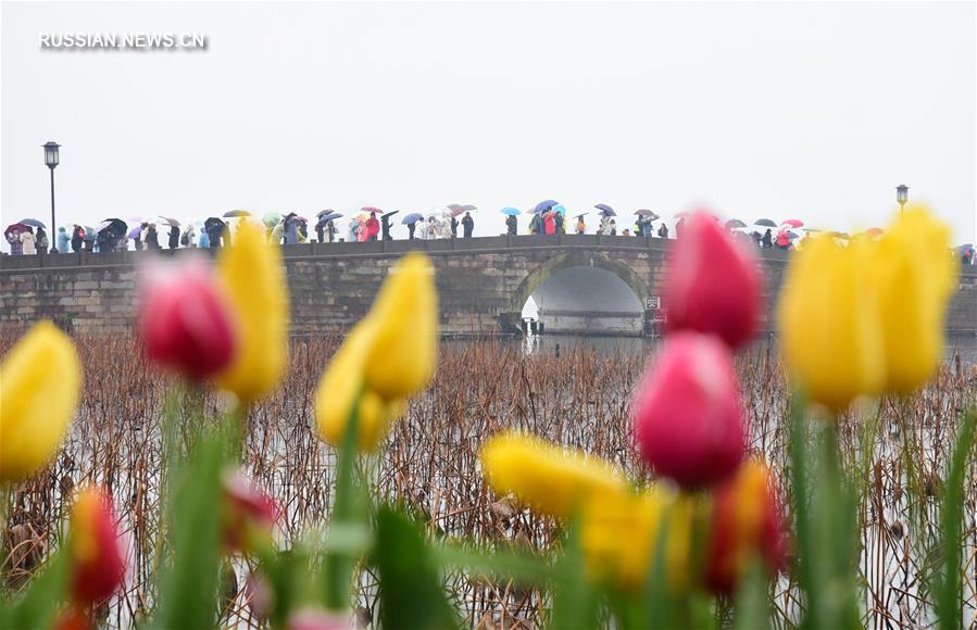 Доходы от внутреннего туризма в Китае за дни Праздника весны составили 513,9 млрд юаней