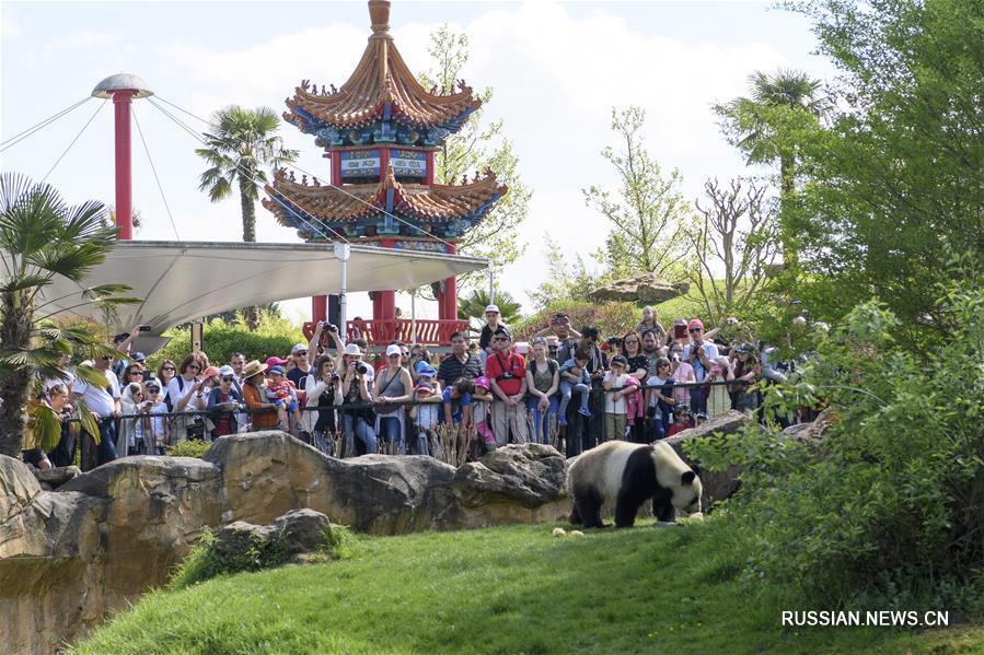 Устойчивые и далеко идущие отношения между Китаем и Францией