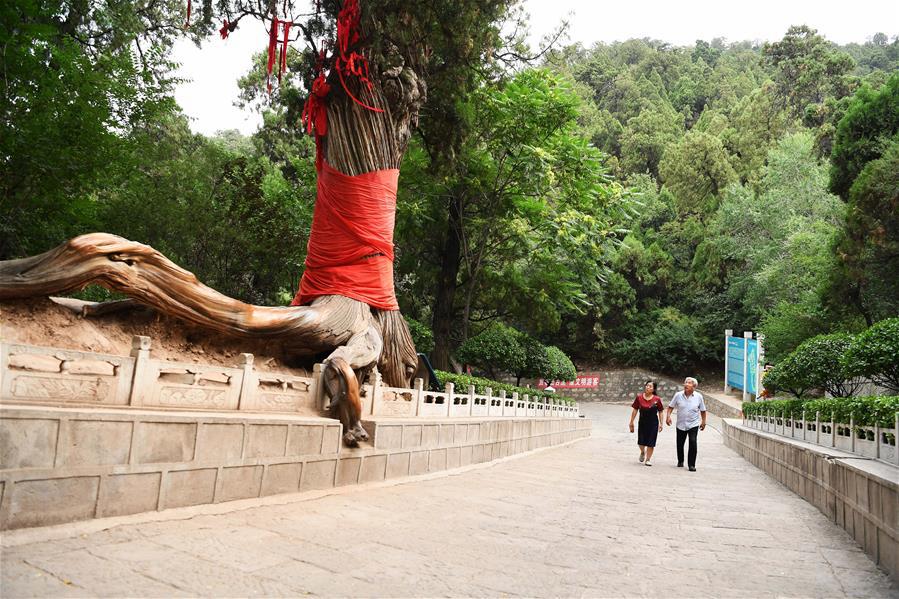 Гора Гуашань в провинции Шаньси