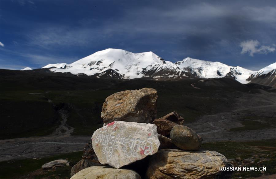 Завораживающая красота высокогорных лугов в уезде Мацинь